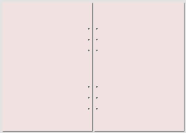 Бланки для Filofax нелинованные A5 pink