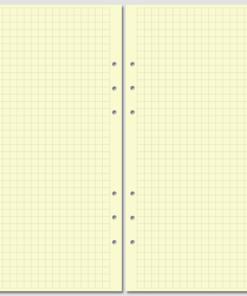 Бланк в клетку Filofax A5 желтый
