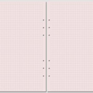 Бланк в клетку Filofax A5 розовый