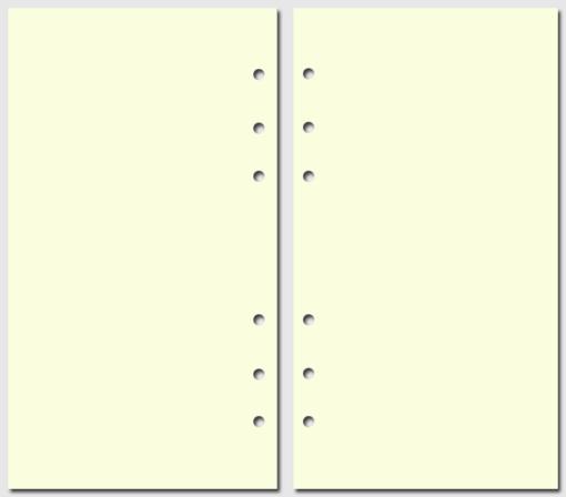 Бумага для записей Filofax Personal желтый