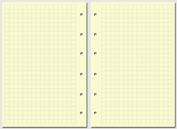 Бланк в клетку Filofax Pocket желтый