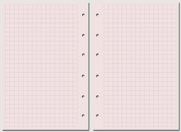 Бланк в клетку Filofax Pocket розовый