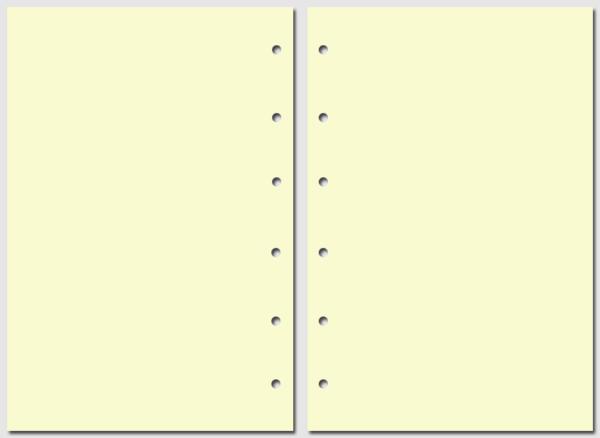 Бумага для записей Filofax Pocket желтая