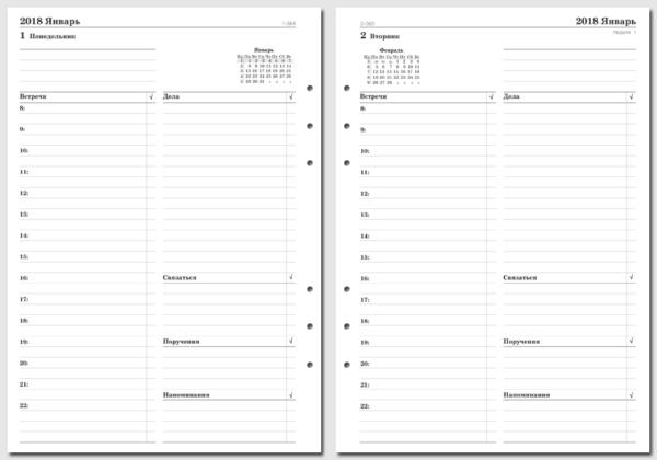 """Бланки """"День на странице"""" бизнес-версия, A5"""